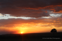 photo of Sunset over Masai Mara
