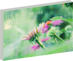 """New Mercies"" inspiration canvas wall art - 3D preview"